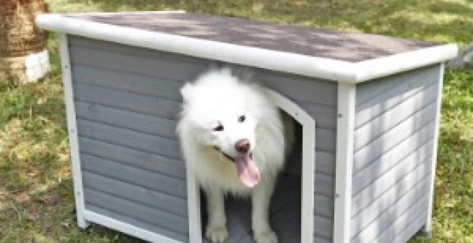 Best Dog House Reviews