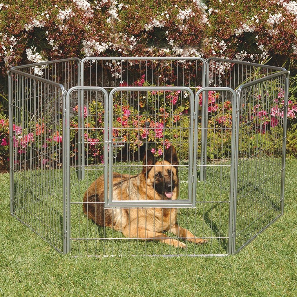5 Best Outdoor Dog Kennels (Reviews Updated 2019)