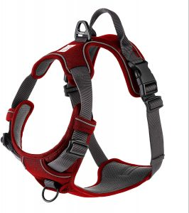 My Busy Dog Harness Vest