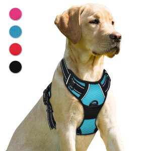 Barkbay No Pull Dog Harness
