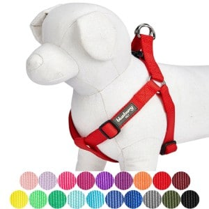 5 Best Dog Harness Reviews (Updated 2019) 4