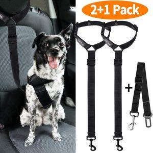 Cooyoo Dog Seat Belt
