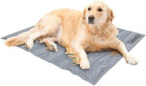 Coleman Comfort Cooling Gel Pet Pad Mat In Large