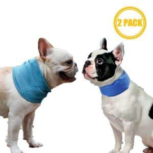 Coomour 2pcs Cooling Dog Collar