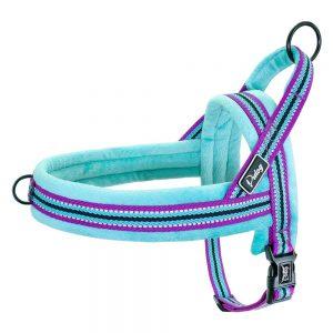 Didog Dog Vest Harness