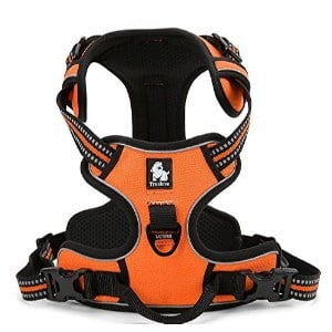 5 Best Dog Harness Reviews (Updated 2019) 1