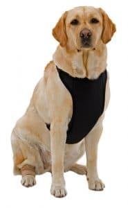 Kumfy Tailz Warming Cooling Dog Harness