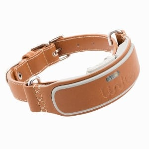 Link Akc Smart Dog Collar With Gps Tracker Activity Monitor Product Image
