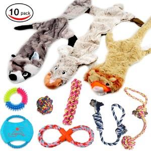 Lobeve Dog Toys Gift Set Product Image