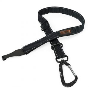 Mighty Paw Safety Belt
