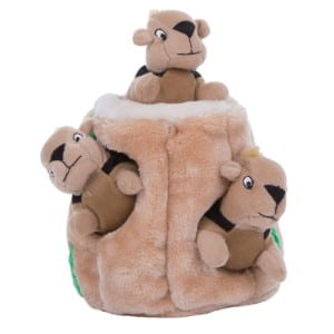 Outward Hound Hide A Squirrel And Puzzle Plush Squeaking Toys for Dogs Image du produit