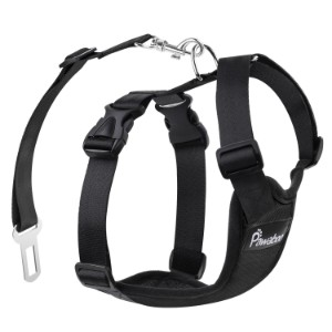 5 Best Dog Harness Reviews (Updated 2019) 2