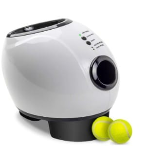 5 Best Automatic Fetch Machine Reviews (Updated 2019) 5