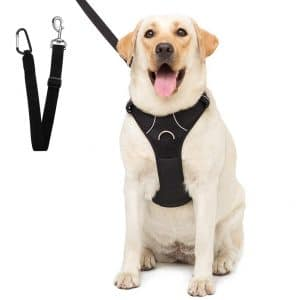 Scenereal Dog Safety Harness With Car Vehicle Seat Belt