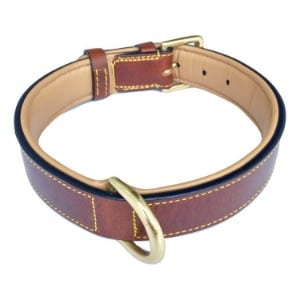 Soft Touch Collars Luxury Real Leather Padded Dog Collar Product Image