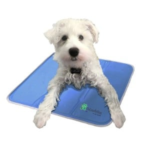The Green Pet Shop Dog Cooling Pad Product Image