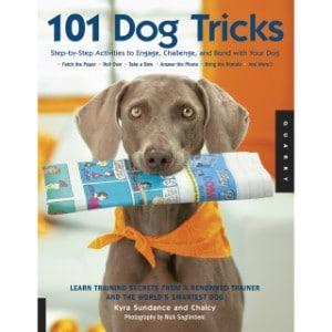 101 astuces pour chiens, formation étape par étape pour intéresser, défier et attacher à l'image de marque de votre chien