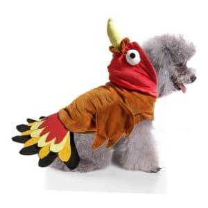 Bwogue Turkey Dog Costume