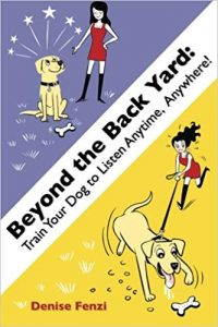 À l'extérieur de la cour, entraînez votre chien à écouter à tout moment, n'importe où!