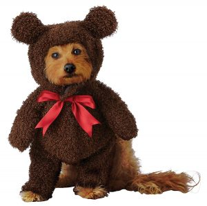 Brown Teddy Bear Dog Costume