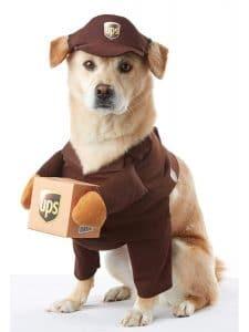 Brown Ups Pal Dog Costume