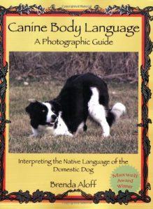 Dog Body Language Un guide photo qui interprète la langue maternelle d'un chien