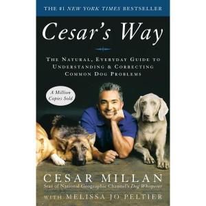Cesar's Way Un guide naturel et quotidien pour comprendre et corriger les problèmes des chiens