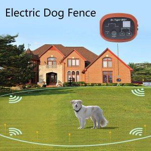 Dr.tiger 2 Receiver Electric Dog Fence