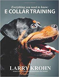 E Collar Training Everything You Need To Know To Effectively Train Your Dog With An E Collar