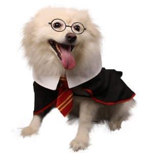 Impoosy Pet Wizard Costume