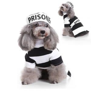 Luckstar Prisoner Dog Costume