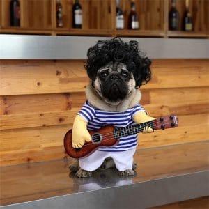 Nacoco Pet Guitar Costume