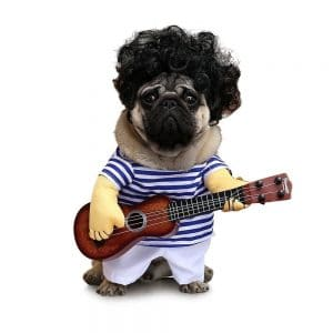 Petisay Dog Costume