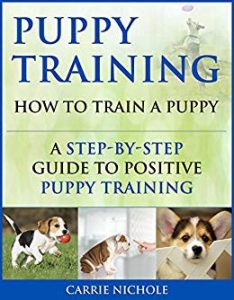 Puppy Training Basics Tips And Tricks To Train Your Puppy Using The Power Of Positive Reinforcement