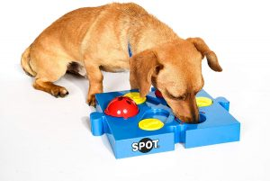 Spot Seek A Treat Distributeur de friandises Flip 'n Slide pour chiens