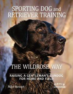 Chien de sport et chien d'arrêt de formation Wildrose façon d'élever un gentilhomme à la maison et sur le terrain