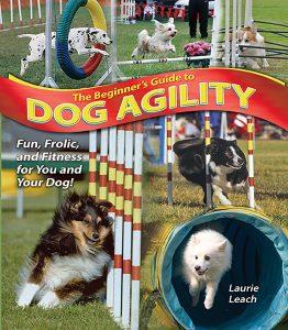 Guide du débutant sur l'agilité des chiens