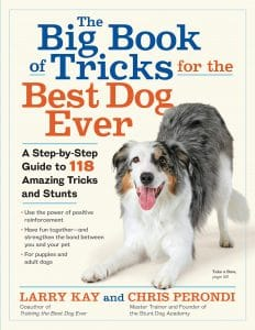 The Big Book Of Tricks For The Best Dog Ever A Step By Step Guide To 118 Amazing Tricks And Stunts
