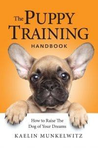 Guide de formation pour chiots sur la façon d'élever le chien de vos rêves