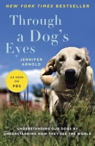 À travers les yeux d'un chien Nous comprenons nos chiens en comprenant comment ils voient le monde