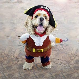 Vevins Pet Costume