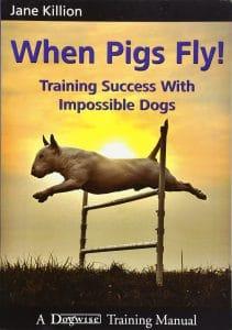 Quand les cochons volent avec succès avec des chiens impossibles