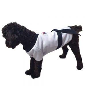 Youthdog Dog Costume