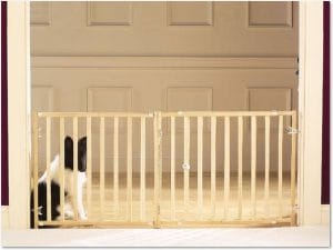 5 Best Dog Gate Reviews