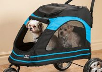 30 Best Dog Strollers (Reviews Updated 2021)
