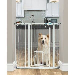 5 Best Dog Gate Reviews (Updated 2019) 2