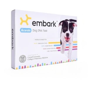 5 Best Dog DNA Test Reviews (Updated 2019) 1