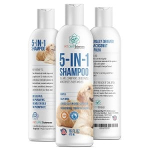 5 Best Puppy Shampoo Reviews (Updated 2019) 5