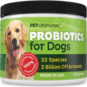 6 Best Probiotics for Dogs Reviews (Updated 2019) 3