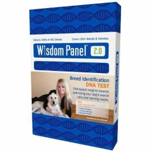5 Best Dog DNA Test Reviews (Updated 2019) 4